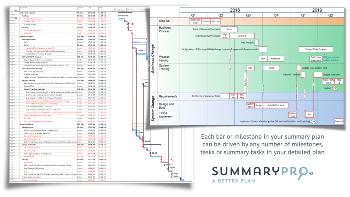 Full plan Vs Summary Pro