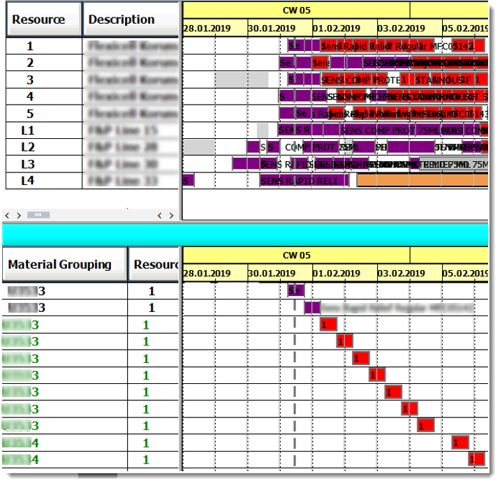 SAP report showing detail for asset